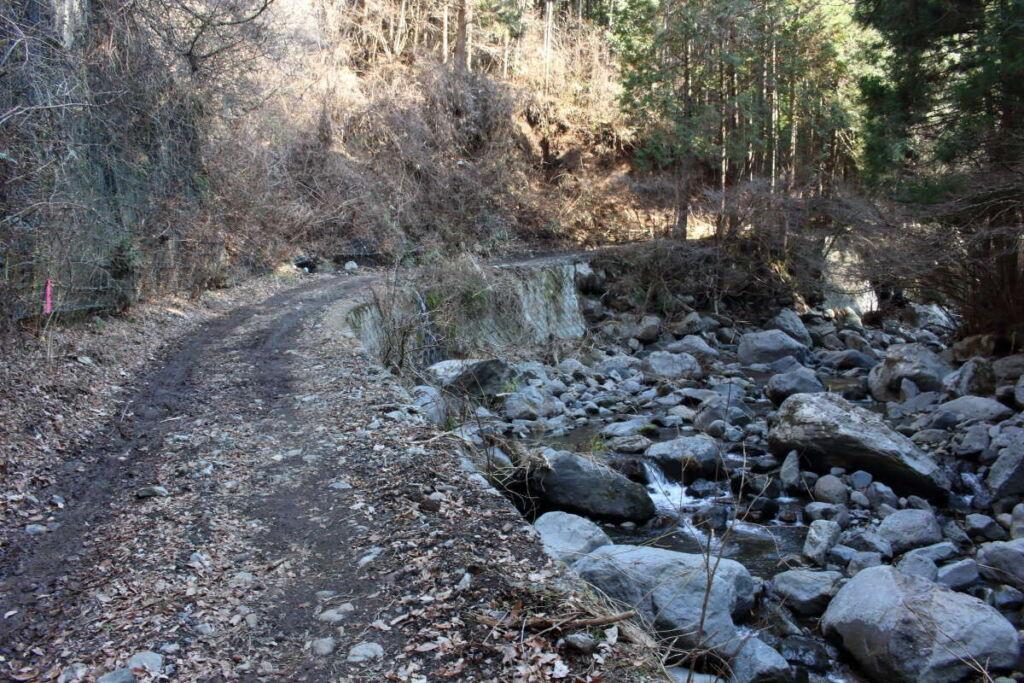 沢沿いの林道は緩い下り坂