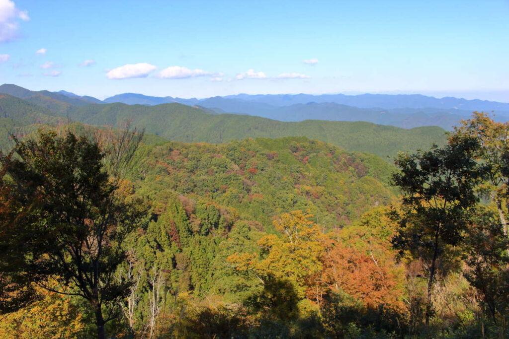 岩茸石山山頂は眺望抜群! 奥武蔵の山々が見渡せます