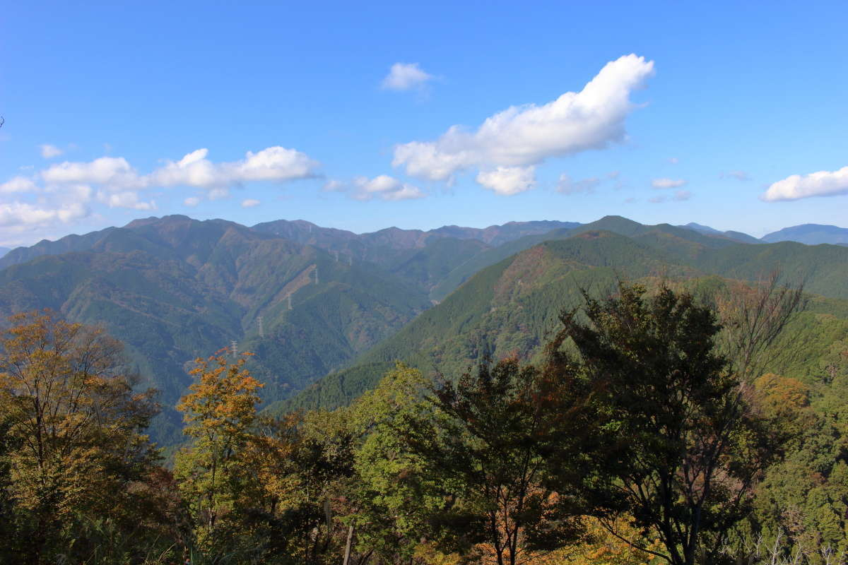 岩茸石山から奥武蔵方面への縦走もできます