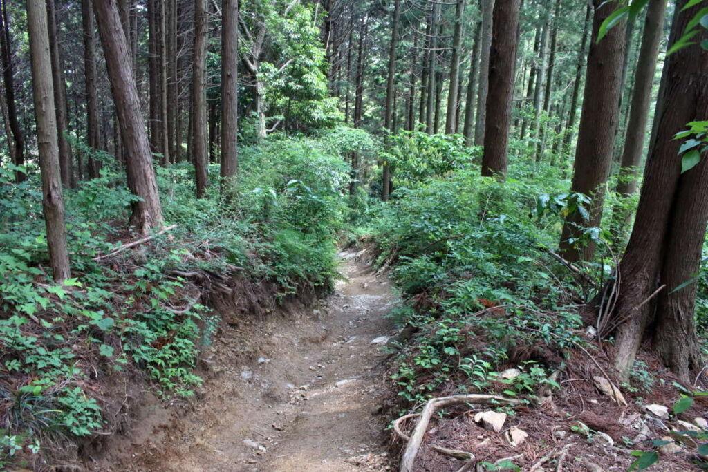 景信山山頂から急な坂道を下ります