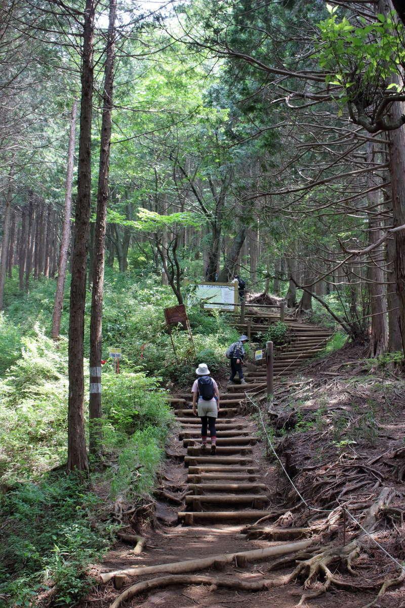 小仏城山への階段