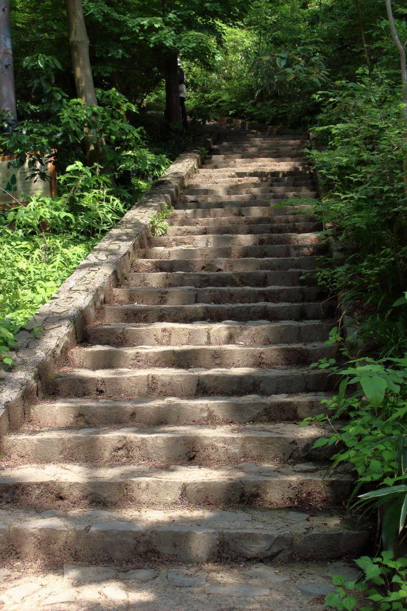 高尾山への最後の試練、長い石段!