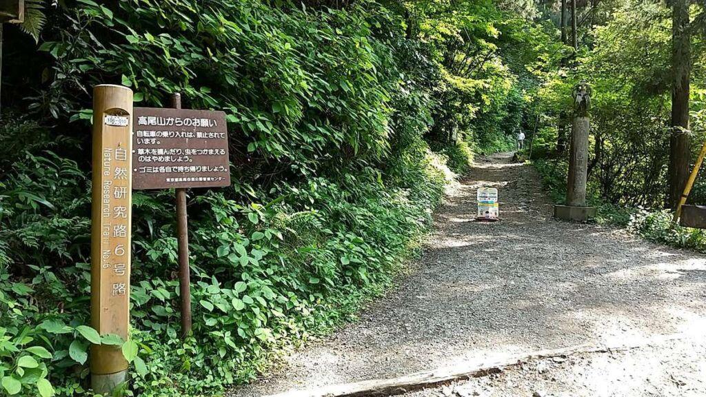 高尾山6号路の登山口まで下山