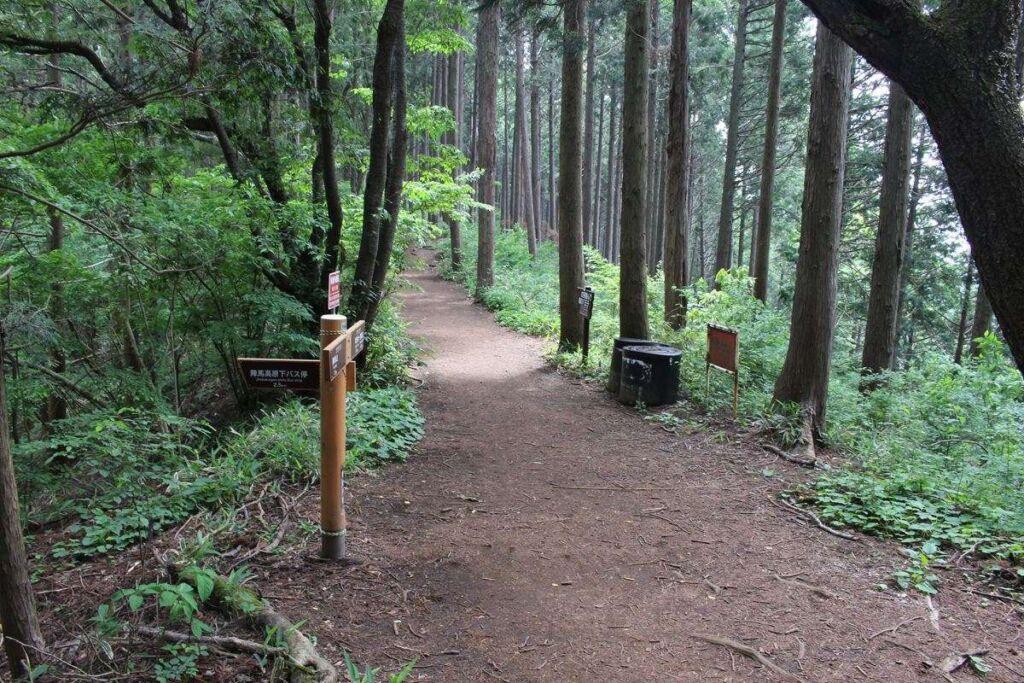 快適な樹林帯の登山道が続く奥高尾縦走路