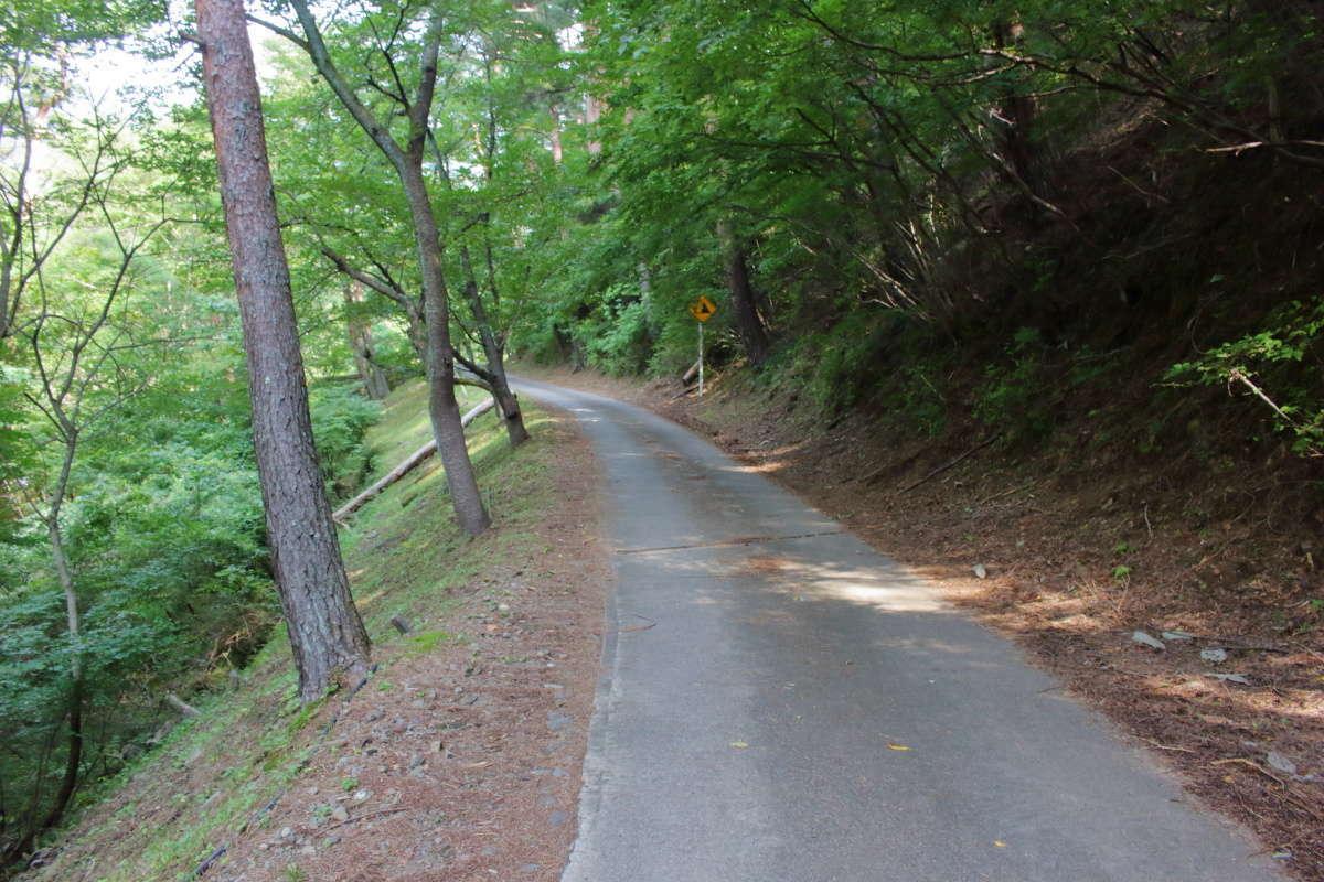 延々と車道歩きが続きますが沢沿いで風は涼しげ
