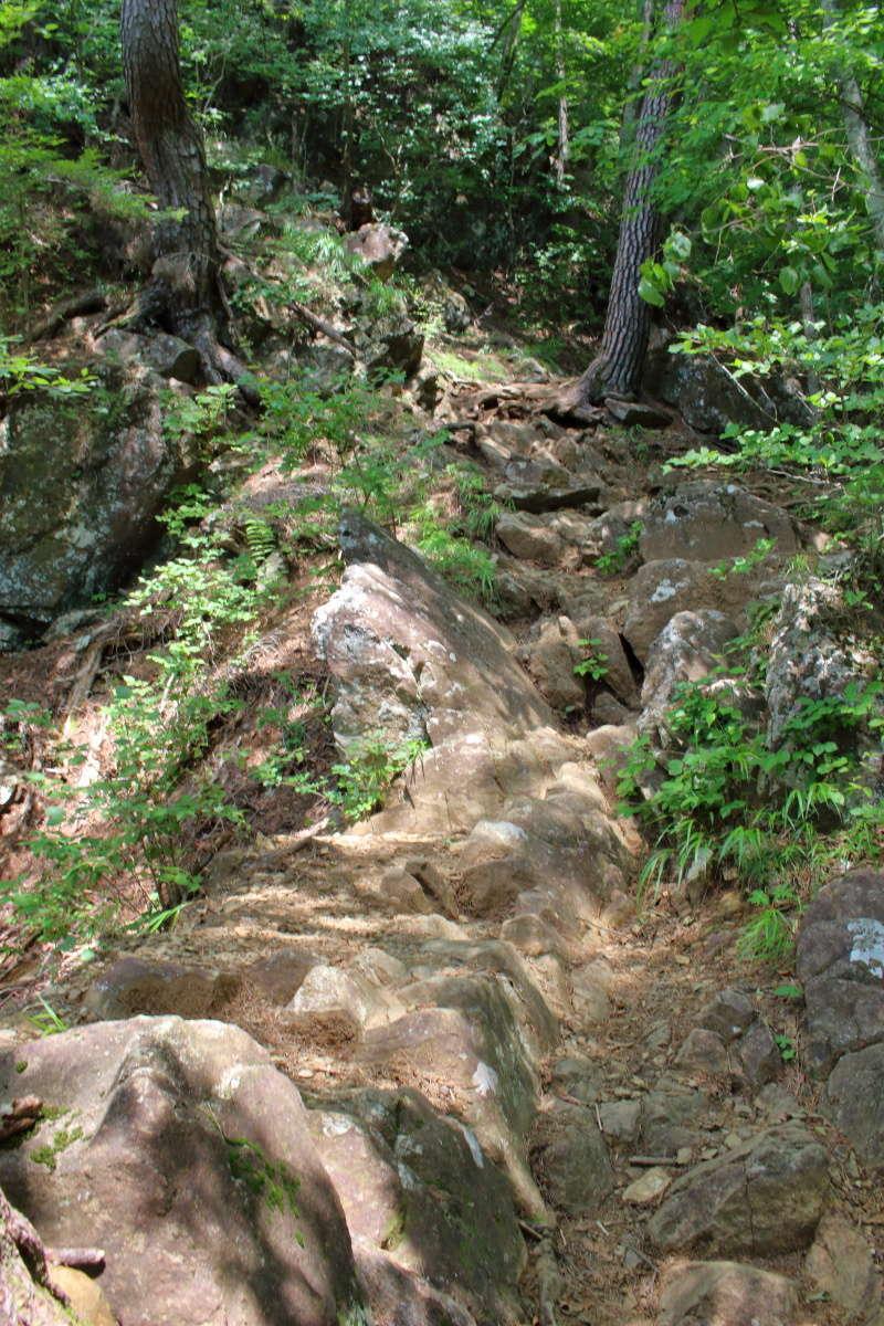 「馬返し」から先は岩が転がる急登へ
