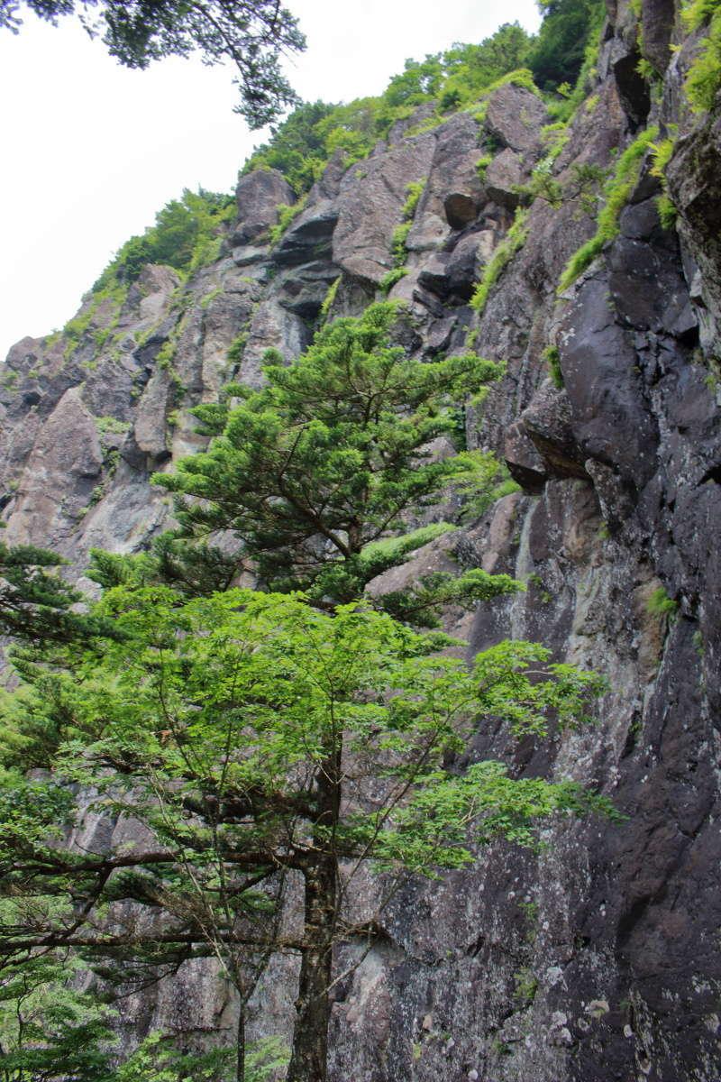 クライミングのメッカ、巨大な「屏風岩」