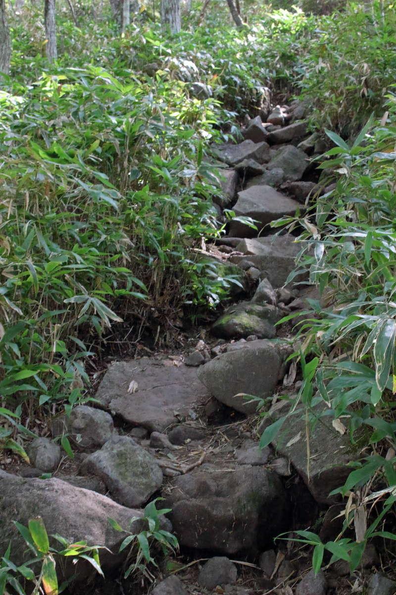 黒檜山登山口を入ってすぐ、いきなりの急登!