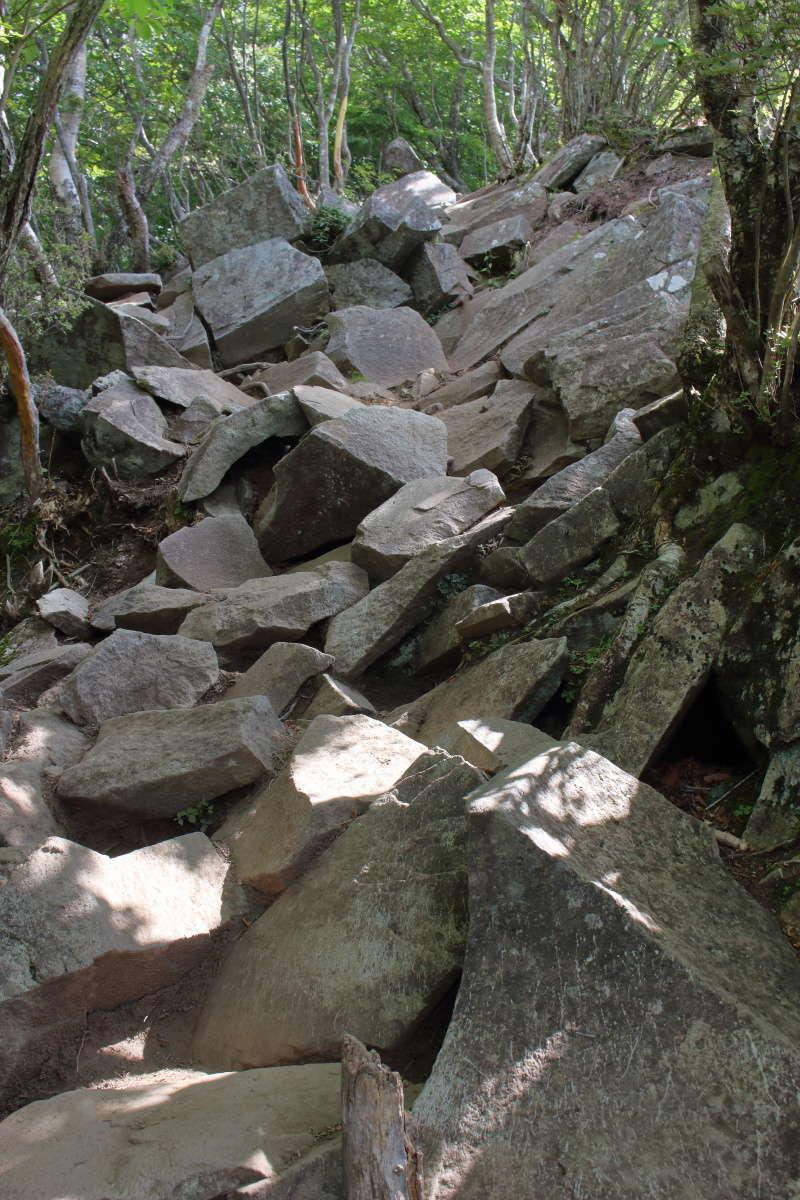大きな岩がゴロゴロしている登山道