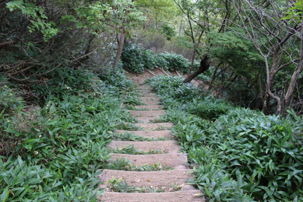 黒檜山から駒ヶ岳への縦走路は階段が整備されています