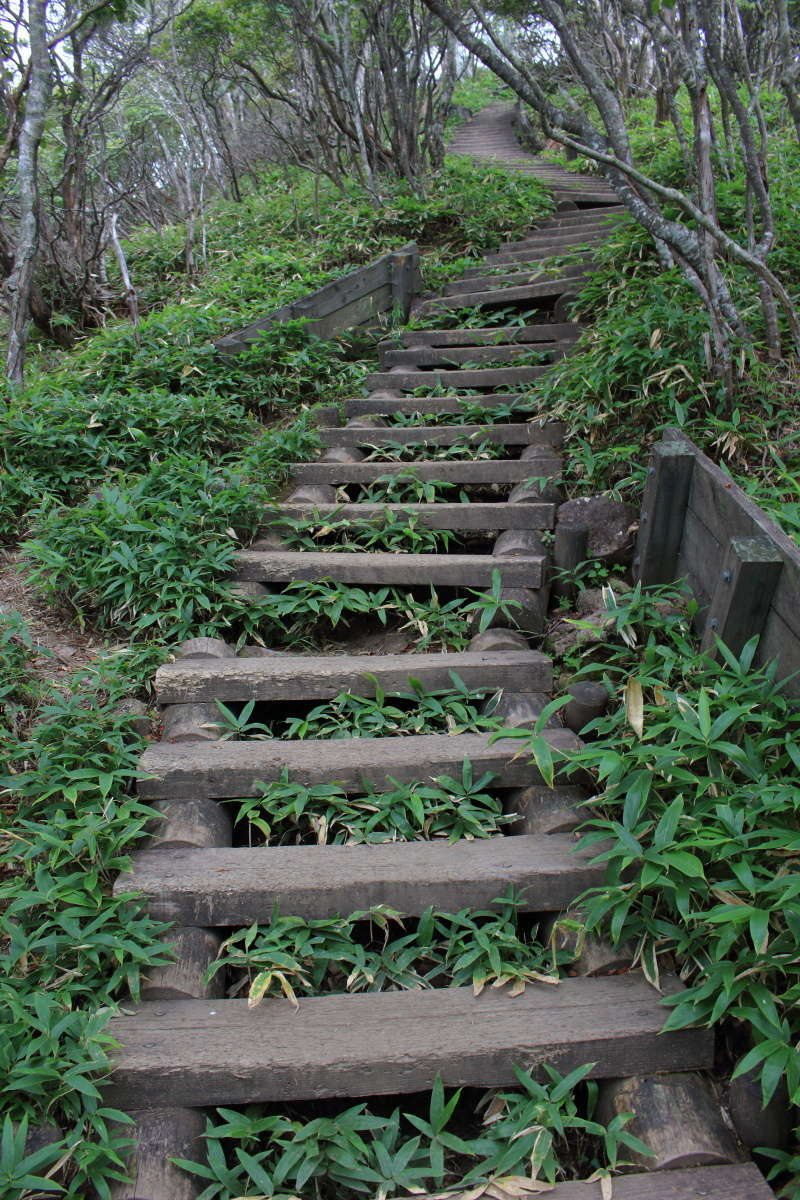 駒ヶ岳山頂直下の急な階段!