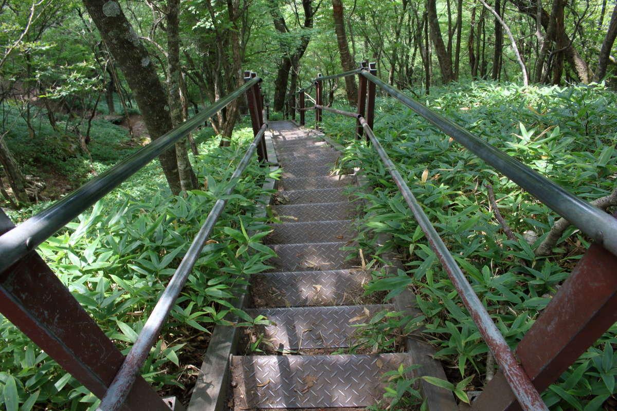 駒ヶ岳登山口へ一気に下りますが、階段が整備されています