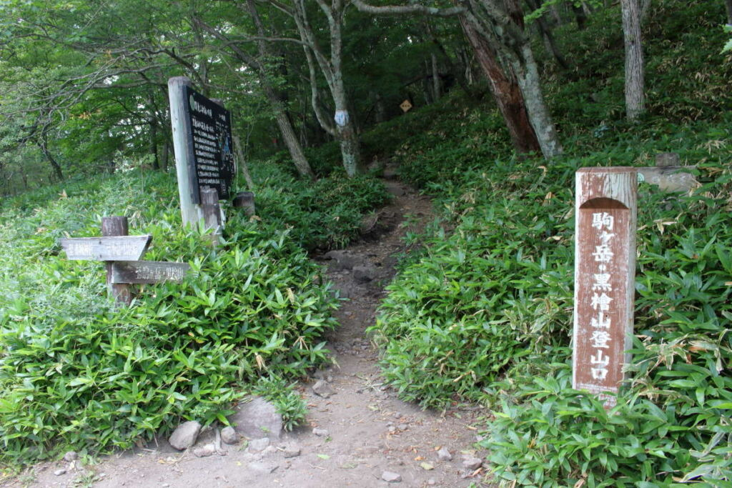 駒ヶ岳登山口へ下山!