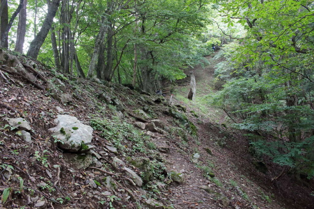 急な斜面につけられた道を歩いていきます