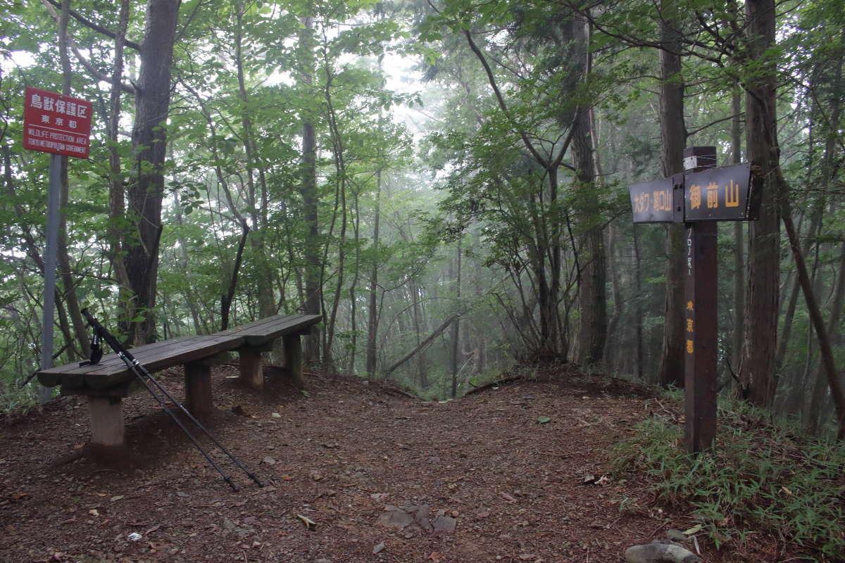 眺望のないピーク「クロノ尾山」に到着、ベンチで休憩できます