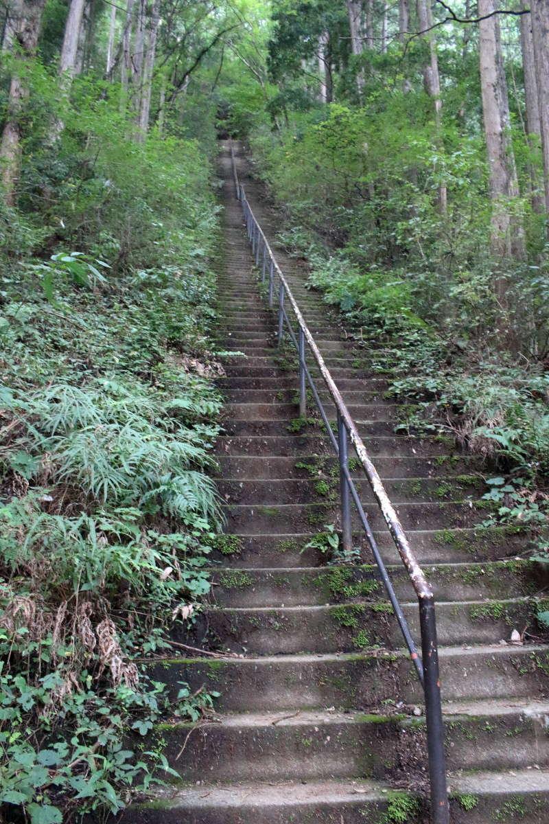 愛宕山から奥多摩駅へは長くて急な石段を下ります
