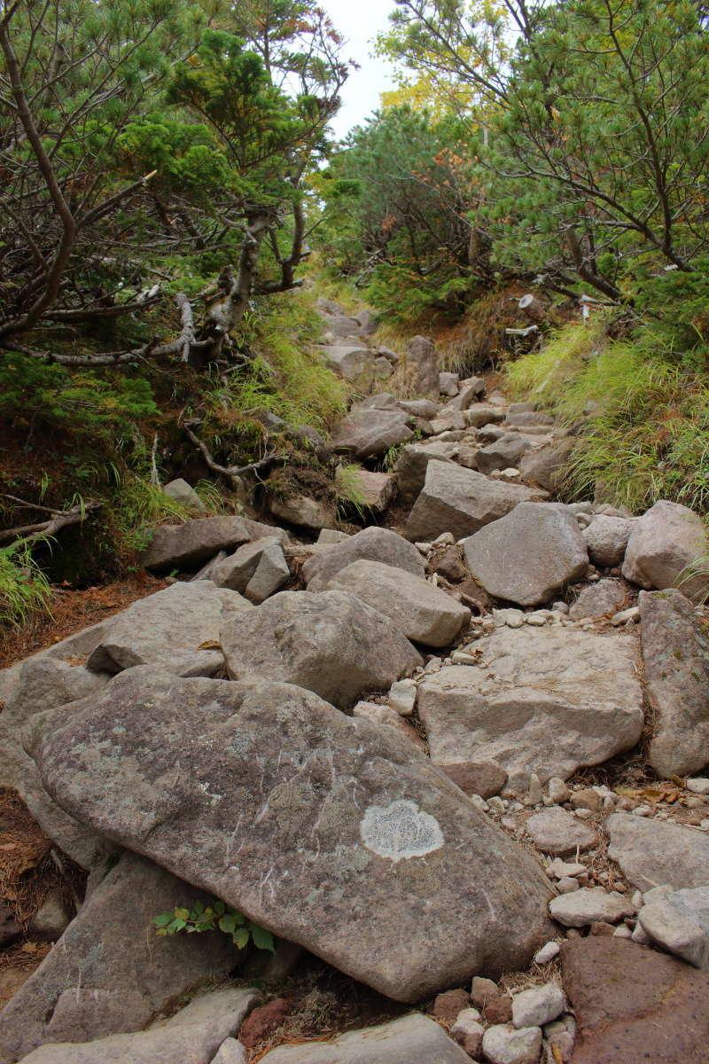 狭くて岩が多い急登がひたすら続きます