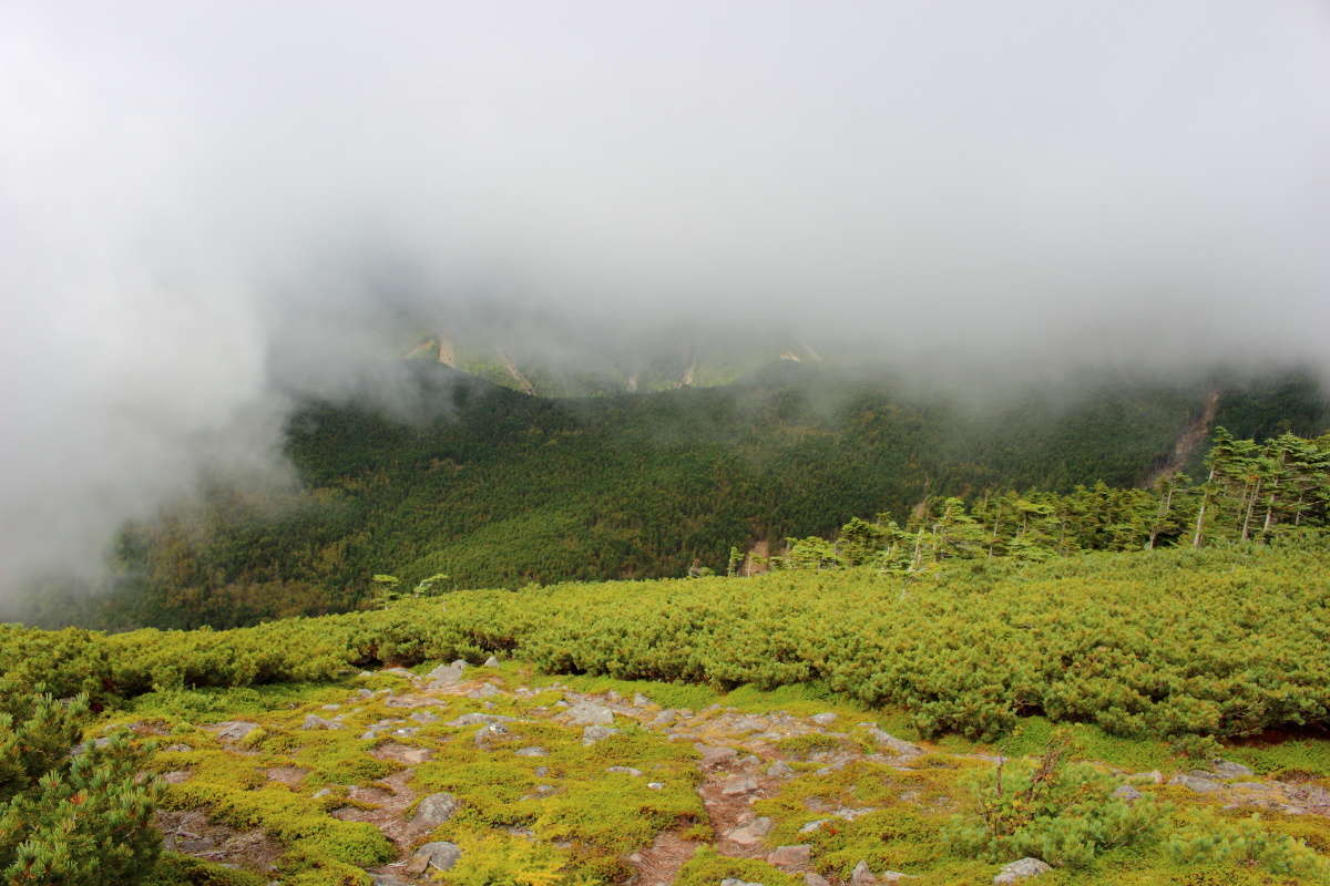 なかなかガスが晴れてくれない編笠山山頂