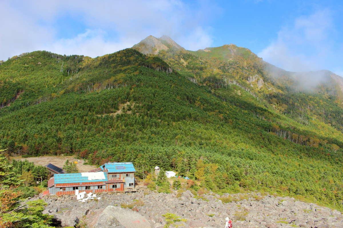 青年小屋の背後にギボシと権現岳