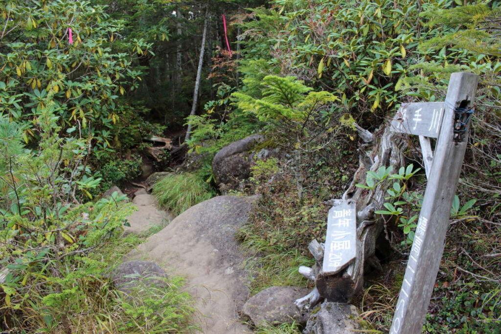 押手川へ下る登山道の入口、ちょっと薄暗い