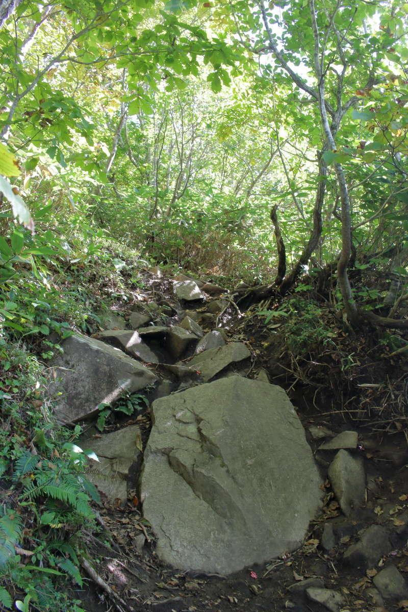 松出山までは岩が多い急登もありますが長くは続きません