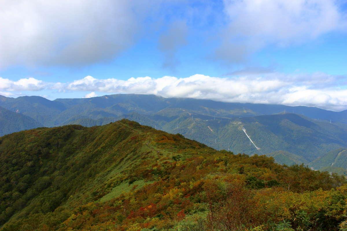 歩いてきた方向を振り返ると稜線の向こうに苗場山