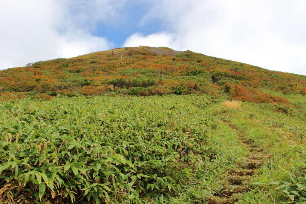 平標山山頂付近は見事な紅葉!