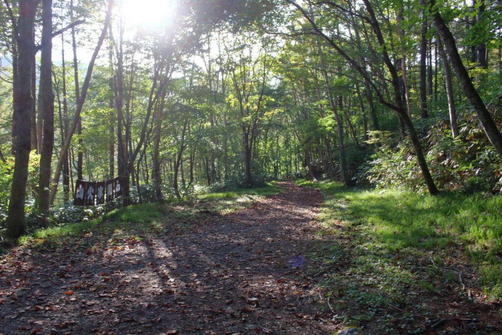 平元新道の登山口から先は長い林道を下る