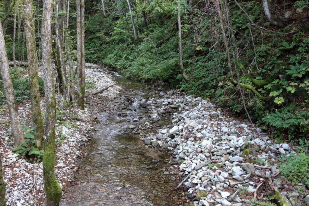 沢を渡ると砂利道からアスファルトになり、平標登山口まであと一息!