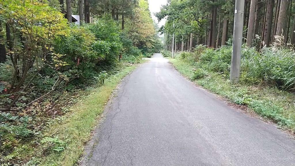アスファルトの道になると平標登山口まではもうすぐ!